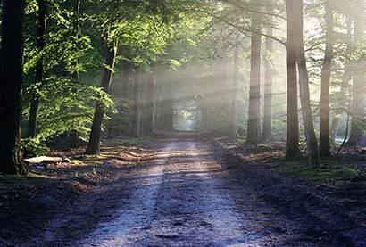 ¿Qué es lo mágico que sucede cuándo aprendemos a manejar nuestra mente subconsciente?