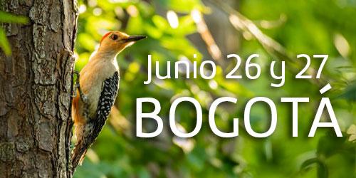 RETIRO-VOLVER-BOGOTA-JUNIO-